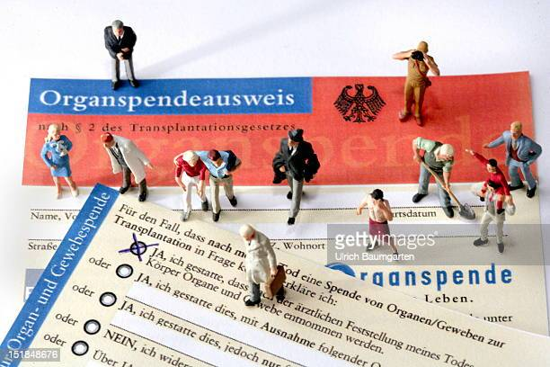 In this photo illustration little plastic toy figures are seen on a German organ donation donor card on August 13 2012 in Bonn Germany