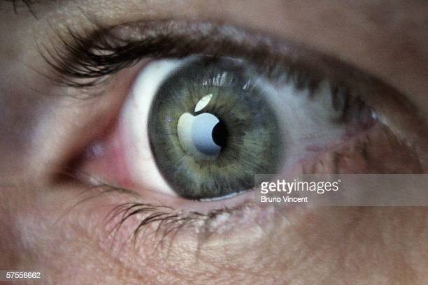 In this photo illustration the logo of the Apple computers brand is reflected in the eye of a man looking at a computer screen on May 8 2006 in...