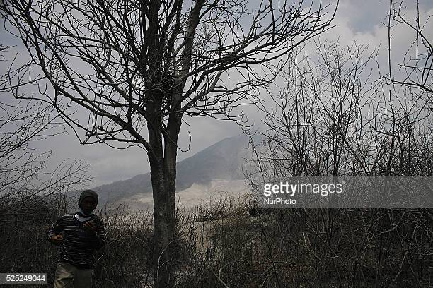In this photo taken on March 7 A resident ran after him avalanches from a series of volcanic eruptions of Mount Sinabung after this latest eruption...