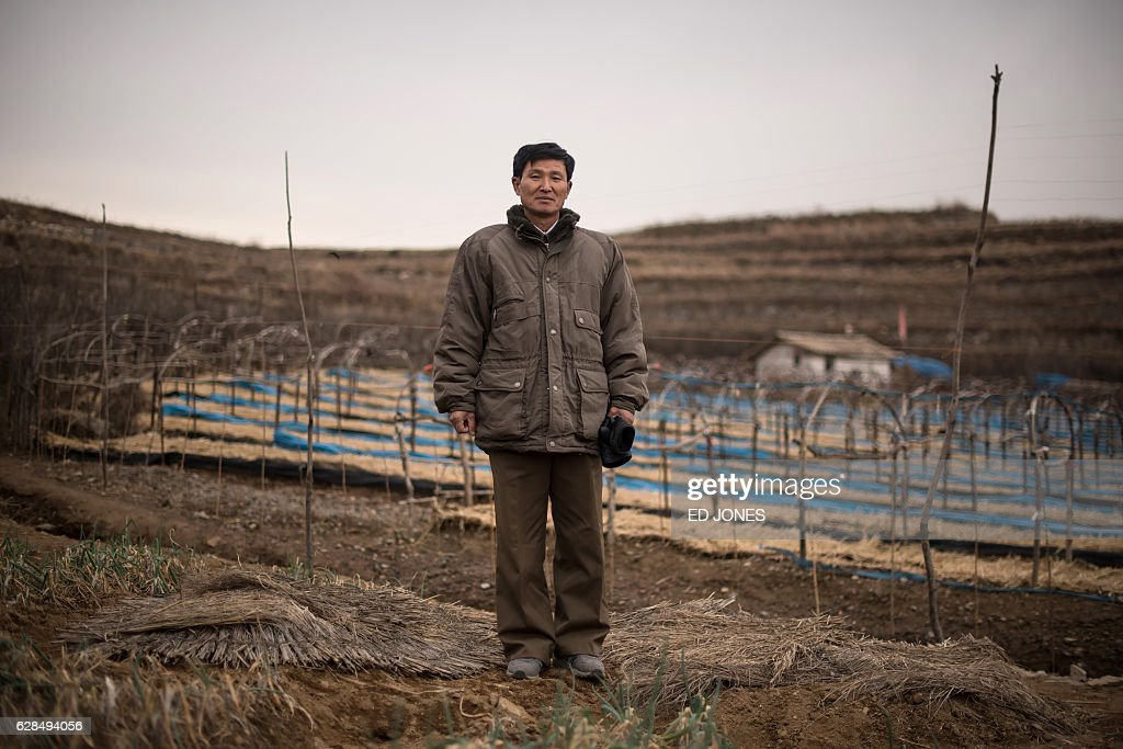 In this photo taken on November 30, 2016, ginseng farm manager Kim Young-Guk poses for a photo in one of his fields on the outskirts of Kaesong, near the Demilitarized Zone (DMZ) separating North and South Korea. / AFP / Ed JONES / This photo package is accompanied by a blog piece written by staff photographer Ed Jones https://goo.gl/lEZ8Fk