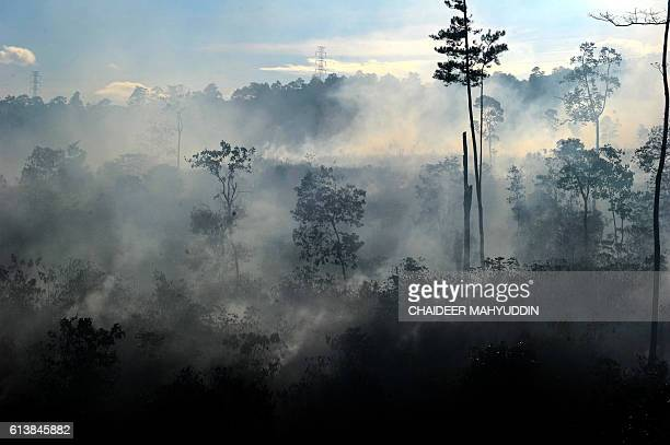 In this photo taken on October 10 shows forest covered by smoke in Seulawah Aceh Besar district in Aceh province after the fire scorched hectares of...