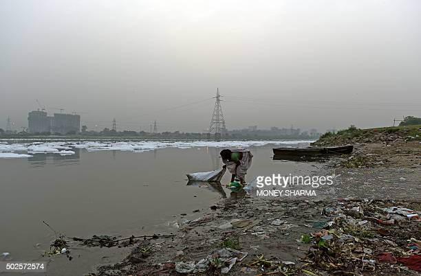 In this photograph taken on April 20 an Indian ragpicker searches for floating items on the banks of the Yamuna River in New Delhi AFP PHOTO/MONEY...