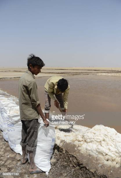 In this photograph taken on April 8 Indian labourers pack raw sodium chloride into sacks in the Little Rann of Kutch some 180kms from Ahmedabad / AFP...