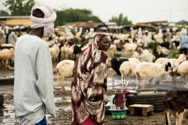 In this photograph taken on August 15 a woman looks on as she walks through sheep and goats at a market ahead of Eid in the Chadian capital of...