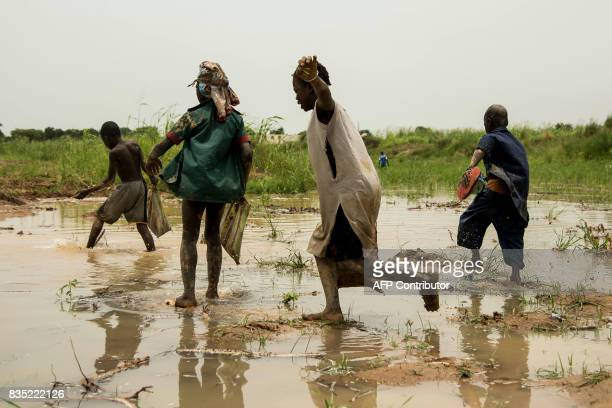 In this photograph taken on August 15 children play in the waters of the River Chari in the Chadian capital of N'Djamena close to the border with...