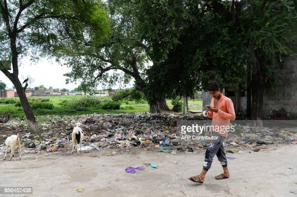 In this photograph taken on August 20 a youth walks past near goats scavenging for food in a roadside dumpsite in Gonda district in the Indian state...