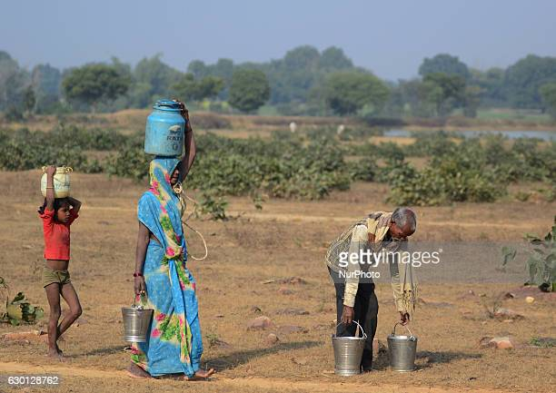 In this photograph taken on December 15Members of an aboriginal 'Kol' community family carry drinking water in steel and plastic containers walking...