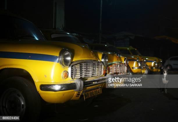 In this photograph taken on February 14 a dog walks past Hindustan Motors Ambassador taxis parked on a street in Kolkata India's Hindustan Motors has...