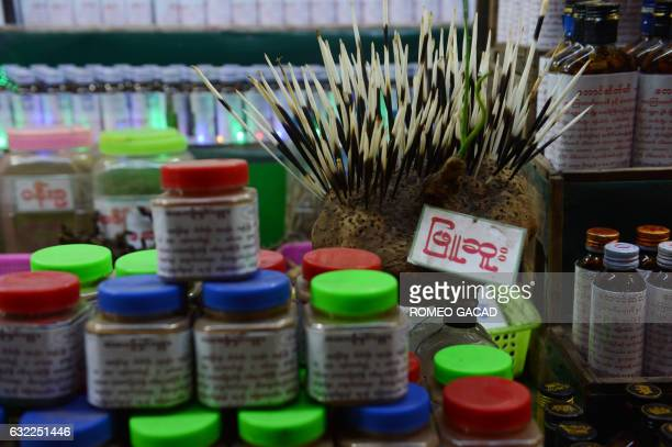 In this photograph taken on January 19 a porcupine quill is displayed for sale at a traditional medicine shop selling elephant parts and other rare...