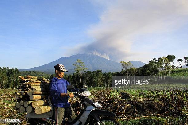 In this photograph taken on July 21 an Indonesian man carrying firewood on a motorcycle passes a field in Banyuwangi located in eastern Java island...