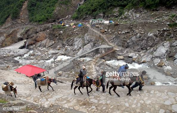 In this photograph taken on June 14 Indian devotees use donkeys to travel along partially restored paths towards Kedarnath Temple in the northern...