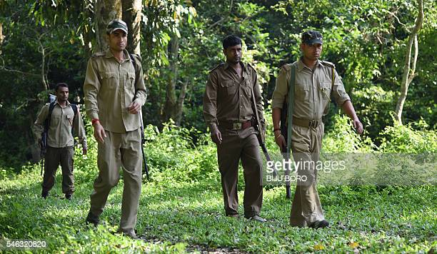 how to become a forest ranger in india