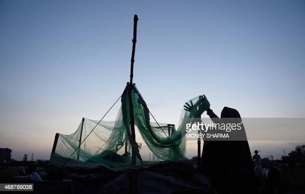 In this photograph taken on March 24 an Indian nomadic shepherd arranges a mosquito net as she prepares a bed at her camp in Sikri in Faridabad some...