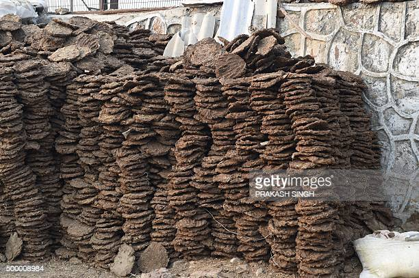 In this photograph taken on November 13 stacks of cow dung cakes for sale stand by a roadside in New Delhi AFP PHOTO/Prakash SINGH / AFP / PRAKASH...