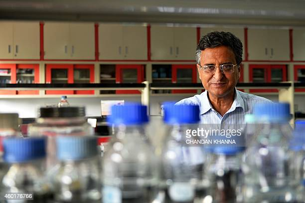In this photograph taken on November 6 Indian researcher Deepak Pental poses in his laboratory at the genetics department of Delhi University in New...