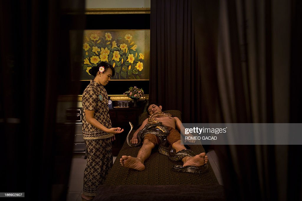 In this photograph taken on October 30, 2013, a masseuse looks on as pythons slither over Indonesian customer Ferdi Tilukay, a 31 year old accountant, for a 'snake body massage' session at the Bali Heritage Reflexology and Spa located in the Indonesian capital city of Jakarta. Lying on a massage table at a spa in the Indonesian capital Jakarta, Feri Tilukay closed his eyes and smiled blissfully as three enormous snakes slithered all over him.
