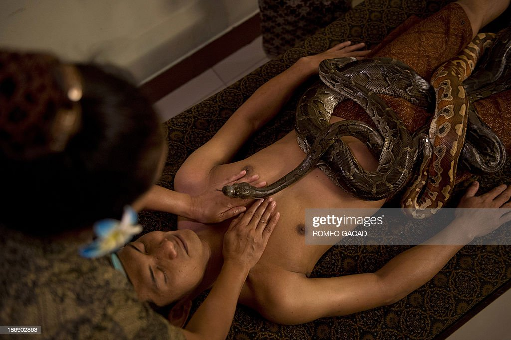 In this photograph taken on October 30, 2013, a masseuse massages while pythons slither over Indonesian customer Ferdi Tilukay, a 31 year old accountant, for a 'snake body massage' session at the Bali Heritage Reflexology and Spa located in the Indonesian capital city of Jakarta. Lying on a massage table at a spa in the Indonesian capital Jakarta, Feri Tilukay closed his eyes and smiled blissfully as three enormous snakes slithered all over him.