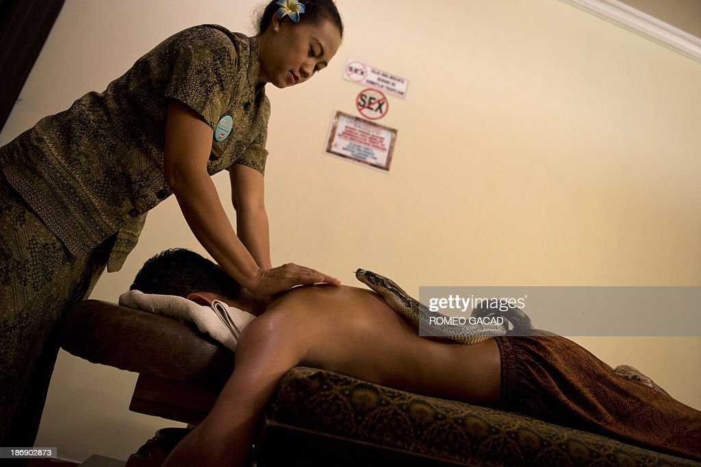 In this photograph taken on October 30, 2013, a masseuse massages while pythons slither over Indonesian customer Ferdi Tilukay, a 31 year old accountant, for a 'snake body massage' session at the Bali Heritage Reflexology and Spa located in the Indonesian capital city of Jakarta. Lying on a massage table at a spa in the Indonesian capital Jakarta, Feri Tilukay closed his eyes and smiled blissfully as three enormous snakes slithered all over him. AFP PHOTO / ROMEO GACAD