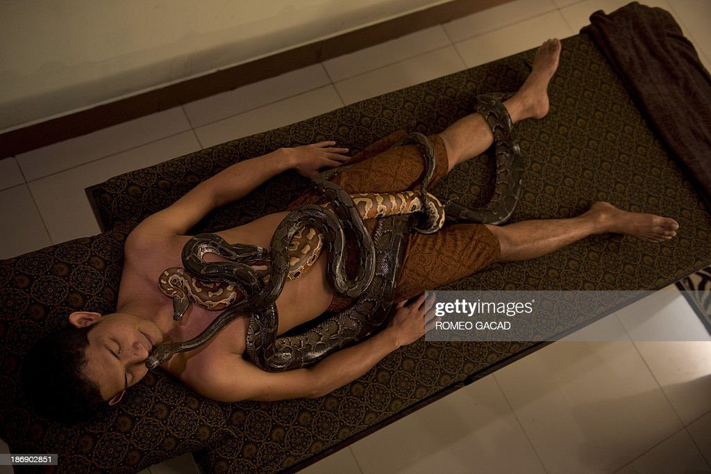 In this photograph taken on October 30, 2013, pythons slither over Indonesian customer Ferdi Tilukay, a 31 year old accountant, for a 'snake body massage' session at the Bali Heritage Reflexology and Spa located in the Indonesian capital city of Jakarta. Lying on a massage table at a spa in the Indonesian capital Jakarta, Feri Tilukay closed his eyes and smiled blissfully as three enormous snakes slithered all over him.