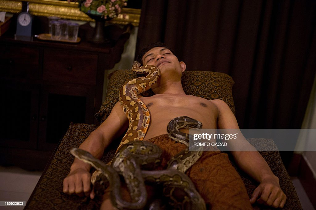 In this photograph taken on October 30, 2013, pythons slither over Indonesian customer Ferdi Tilukay, a 31 year old accountant, for a 'snake body massage' session at the Bali Heritage Reflexology and Spa located in the Indonesian capital city of Jakarta. Lying on a massage table at a spa in the Indonesian capital Jakarta, Feri Tilukay closed his eyes and smiled blissfully as three enormous snakes slithered all over him. AFP PHOTO / ROMEO GACAD