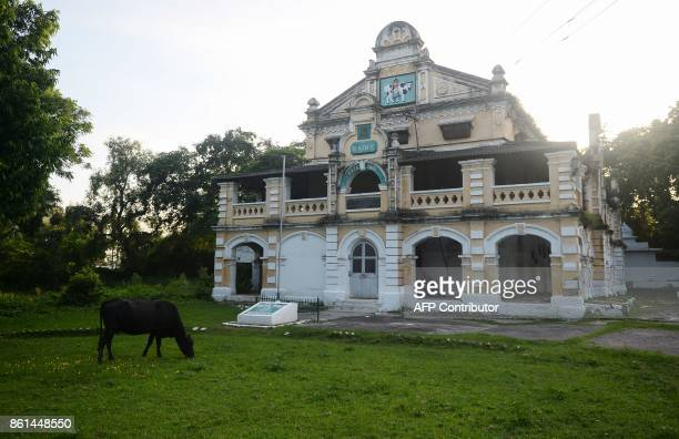 In this photograph taken September 1 2017 a cow stands next to the Britishera dairy farm opened in 1889 that is now run by the Indian military in...