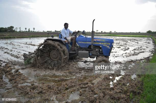 In this picture taken on July 15 2017 an Indian farmer ploughs a field during preparations for paddy crop planting in Nalgonda District in the...