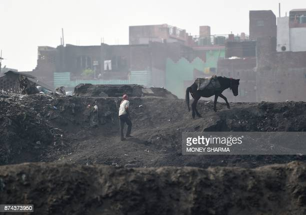 In this picture taken on November 13 a worker walks with his horse after dumping waste from brass factories on the banks of Ramganga river in...