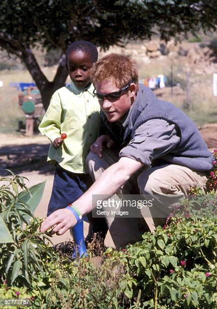 In this undated Clarence House handout photo Prince Harry with Mutsu at the MantsAfe Children's Home in Lesotho Prince Harry has thanked the public...