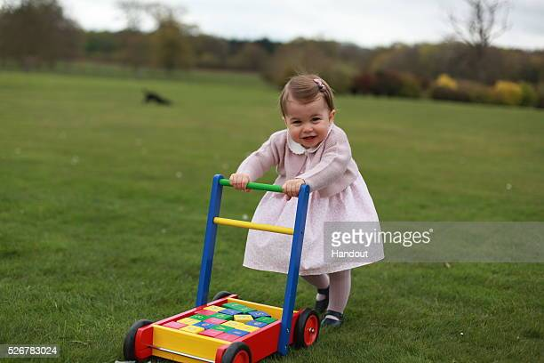 In this undated handout photo provided by HRH The Duke and Duchess of Cambridge released on May 1 Princess Charlotte of Cambridge looks on as she...