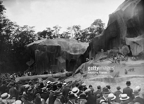 Inauguration of the Zoo de Vincennes by President Albert Lebrun and crowd enjoying the monkeys on June 2 1934 in Paris France