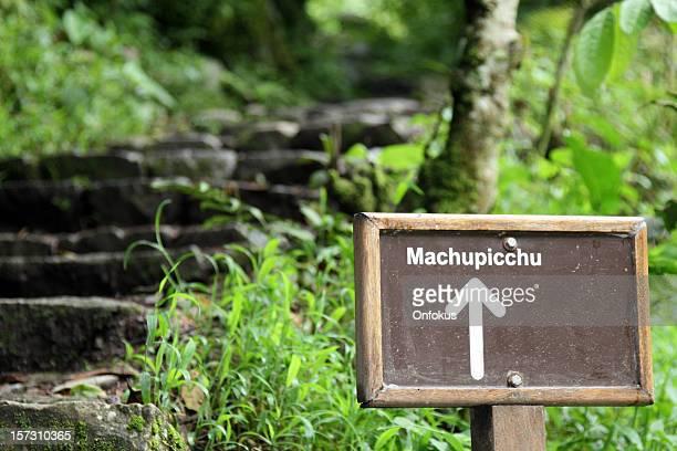 Inkapfad sich im tropischen Wald, Machu Picchu, peru