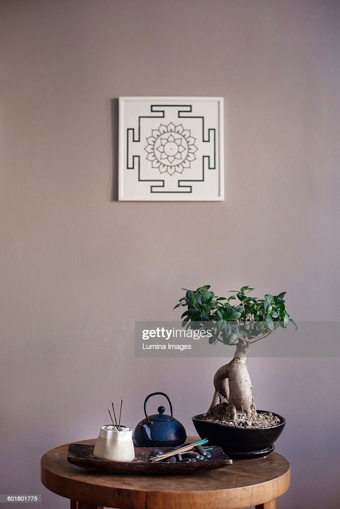 Incense and bonsai tree on table