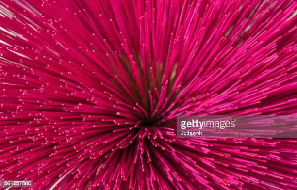 Incense sticks pink background