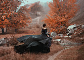 Incredible stunning girl in a black dress. The background is fantastic autumn. Artistic photography.