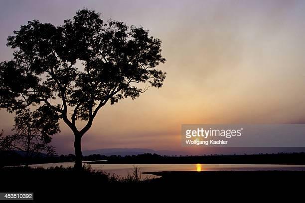 India Assam Province Kaziranga National Park Sunset
