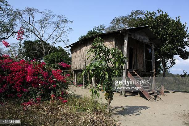 India Assam State Kaziranga National Park Hut Where Game Ranger Lives