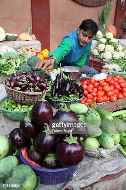 India battles introduction of Genetically Modified foods India houses over 2500 varieties of organically grown brinjal varieties and brinjal is a...