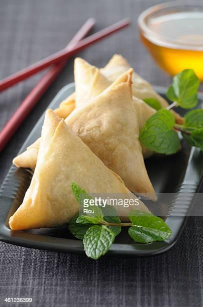 india food samosa