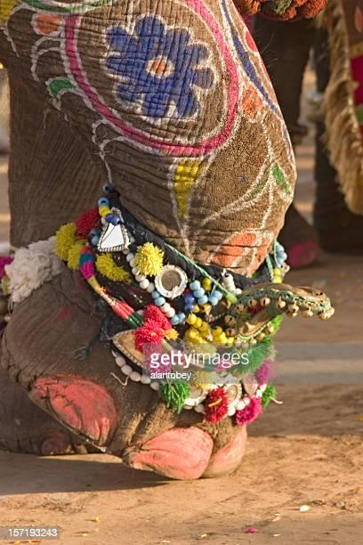 インド:ジャイプールの象祭り、ペインティッド足にジュエリー