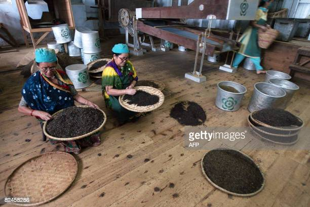 STORY 'Indiacommoditiesteatourism' by Parul Gupta Indian tea garden women labourer sort tea leaves at the factory of the Makaibari plantation some 30...