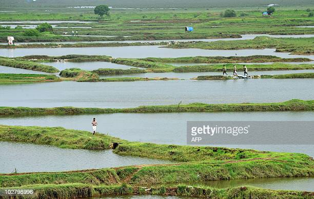 STORY 'Indiaenvironmentairport FEATURE' by Phil Hazlewood Indian men walk along embankments near the proposed site for the new Chinchpada...
