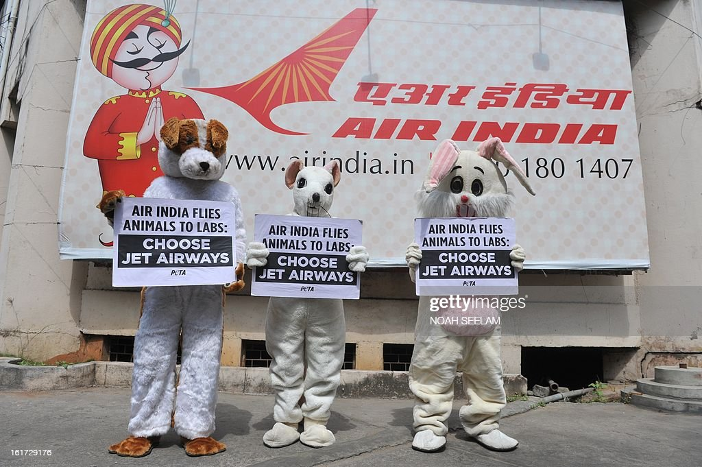 Indian activists from People for the Ethical Treatment of Animals (PETA) dressed dressed as animals holding placard in front of Air India office during a demonstration in Hyderabad on February 15, 2013. PETA members protested against Air India's policy allowing the transportation off animals to laboratories for experimental purposes. AFP PHOTO / Noah SEELAM
