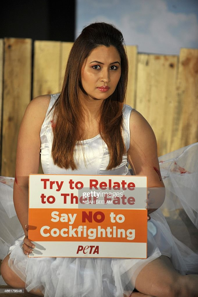 Indian badminton player, <a gi-track='captionPersonalityLinkClicked' href=/galleries/search?phrase=Jwala+Gutta&family=editorial&specificpeople=795812 ng-click='$event.stopPropagation()'>Jwala Gutta</a> enacts an injured rooster lying in a pool of blood inside a cockfighting ring as she holds a placard for People for the Ethical Treatment (PETA)'s latest campaign against Cockfighting in Hyderabad on March 14, 2015. Gutta is in support of PETA's campaign calling that no one should support cockfights as cockfighting causes injuries, suffering and distress for birds. AFP PHOTO/ Noah SEELAM