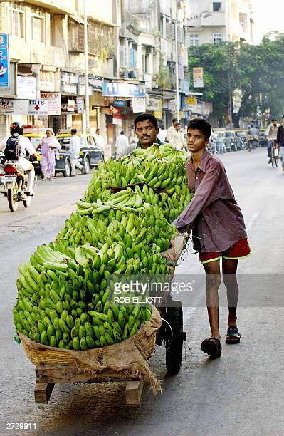 Indian banana traders push a trolley fully laden with fruit along a Bombay street 15 November 2003 Bananas are an ever popular fruit in the markets...