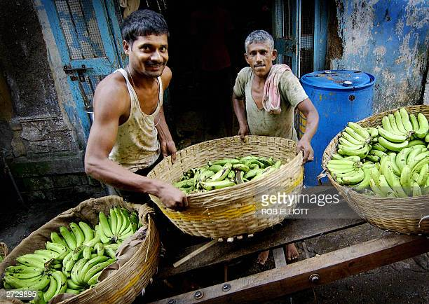 Indian banana traders shift baskets of bananas onto a trolley from a storeroom in a back street of Bombay 15 November 2003 Bananas are an ever...