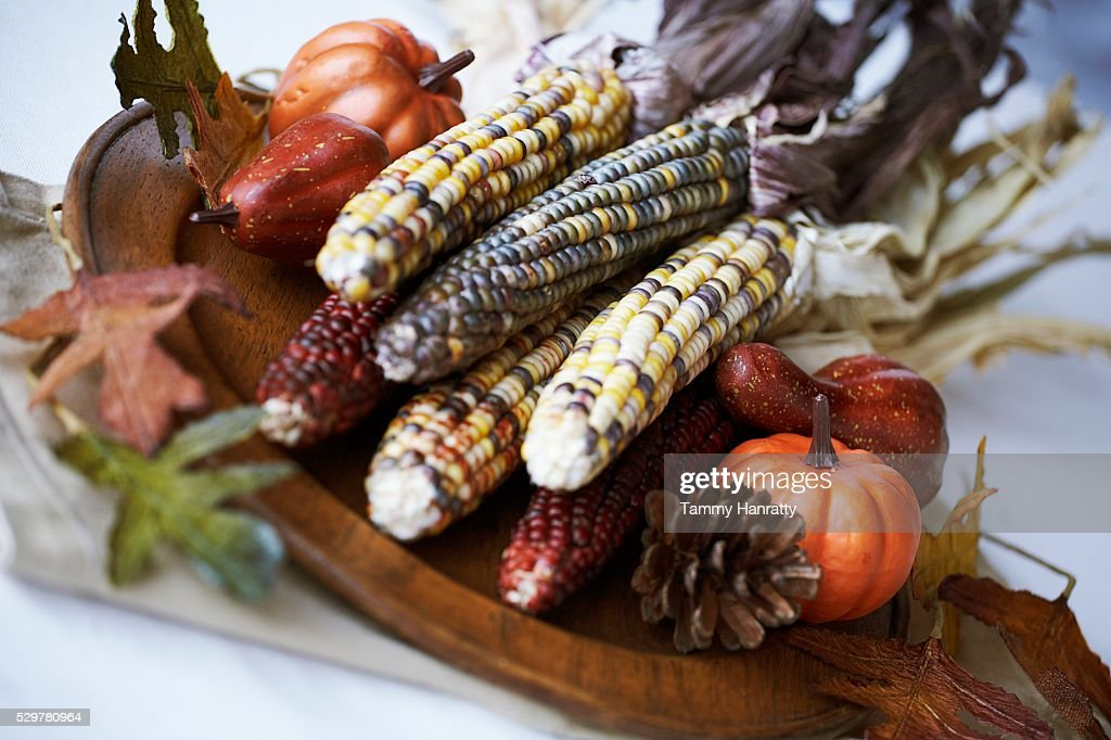 Indian Corn Centerpiece : Stock Photo
