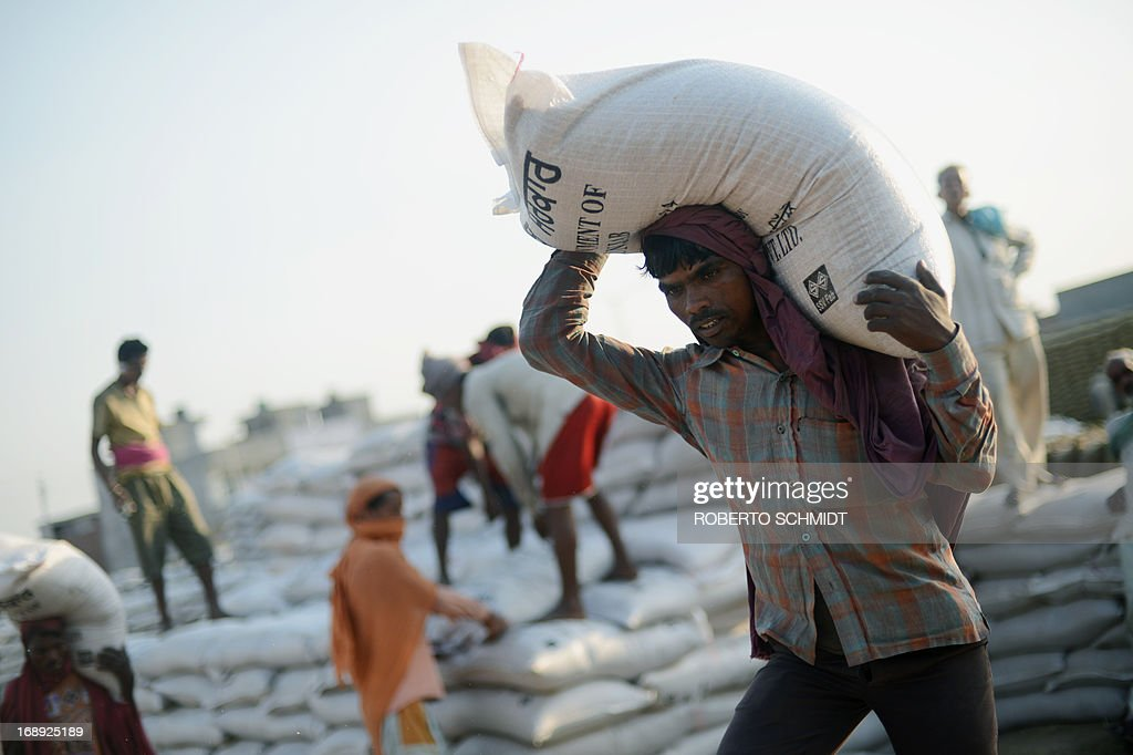 Indian daily-wage labourers load 50 kilo sacks of wheat onto a truck at a grain distribution point on the outskirts of Amritsar on May 16, 2013. This years wheat harvest is expected to be more bountiful than last year, India's Agriculture Ministry said recently. India which is the second largest producer of wheat in the world is expected to produce about 93.6 million metric tons. Some reports estimate that this will mean a decrease in the local price of wheat and a boost in exports due to the large surplus of grain stored.