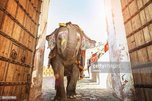 インド象を歩くアンバー・パレスのエントランス