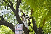 Indian farmer Gajendra Singh stands on a tree before committing suicide during an Aam Aadmi Party rally in New Delhi on April 22 2015 A farmer hanged...