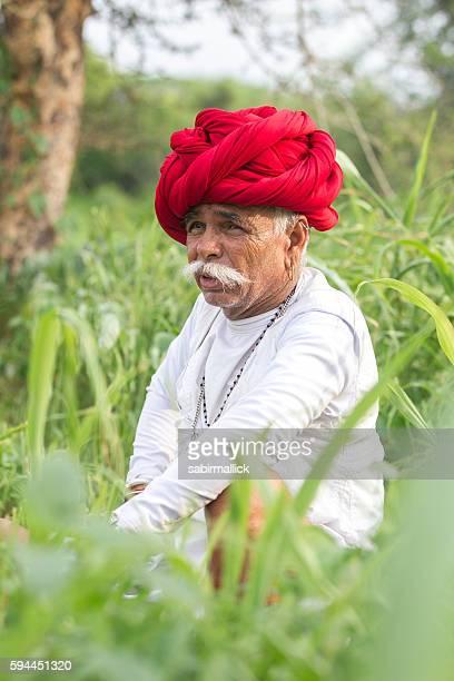 Indian farmer working, Rajasthan, India.